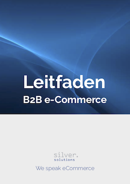 eBook Leitfaden B2B e-Commerce