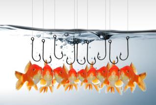 Webinar Verkaufspsychologie Fische Haken
